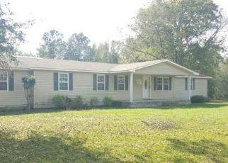 Foreclosed Home en SHARPESPUR RD, Ailey, GA - 30410