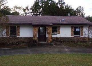 Foreclosed Home en E STEVENSON CT, Inverness, FL - 34452