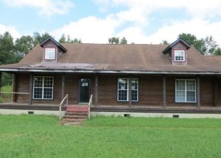 Foreclosed Home en THURGOOD MARSHALL HWY, Andrews, SC - 29510