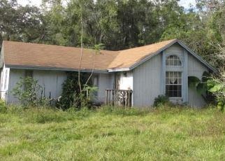 Foreclosed Home en LIME ST, Kissimmee, FL - 34746