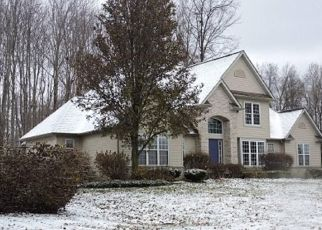 Foreclosed Home en HUNTING LAKE DR, Painesville, OH - 44077