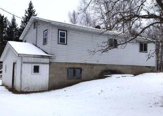 Casa en ejecución hipotecaria in Cass Condado, MN ID: F4328261