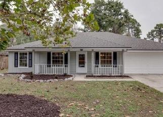 Foreclosed Home en DEERFIELD POINTE DR, Orange Park, FL - 32073