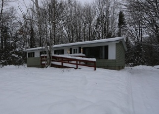 Foreclosed Home en S RAMONA RD, Kinross, MI - 49752