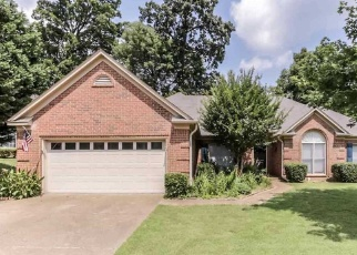 Foreclosed Home in HEDGEWOOD LN, Memphis, TN - 38135