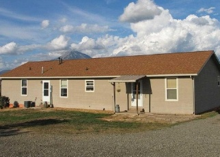 Foreclosed Home en FRUITLAND MESA RD, Crawford, CO - 81415