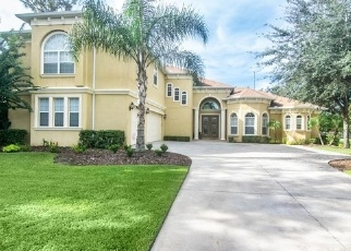 Foreclosed Home in WILD ORCHID DR, Lithia, FL - 33547