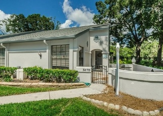 Foreclosed Home in PHEASANT CT, Palm Harbor, FL - 34685