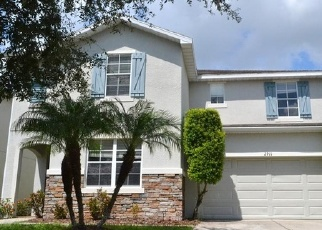 Foreclosed Home in WINGLEWOOD CIR, Lutz, FL - 33558