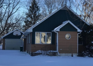 Foreclosure Home in Lyon county, MN ID: F4333196