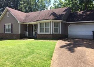 Foreclosed Home in N HEDGEWALL CIR, Memphis, TN - 38141
