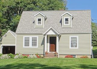 Foreclosed Home en ROUTE 44, Millbrook, NY - 12545