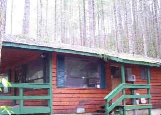 Casa en ejecución hipotecaria in Hoodsport, WA, 98548,  N DOW CREEK DR ID: F4333894