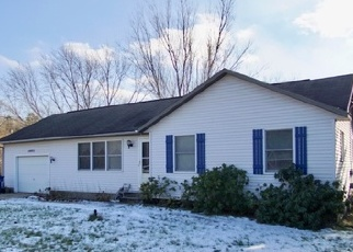 Foreclosed Home en LINCOLN ST, Grand Haven, MI - 49417