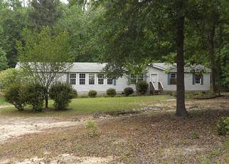 Foreclosed Home en LEE DR, Warrenville, SC - 29851