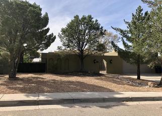 Foreclosed Home in CASA BONITA DR NE, Albuquerque, NM - 87111