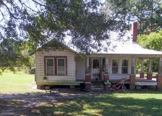 Foreclosed Home in MCMILLAN RD, Stockton, AL - 36579