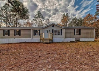 Foreclosed Home en SAINT MATTHEWS RD, Swansea, SC - 29160