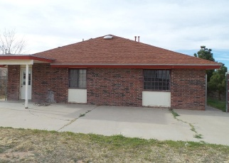 Foreclosed Home in RISING STAR CT, El Paso, TX - 79936