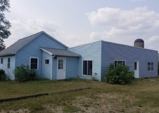 Foreclosed Home en N WYMAN RD, Blanchard, MI - 49310