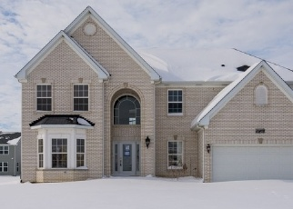 Foreclosed Home in LIMERICK LN, Plainfield, IL - 60585