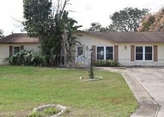 Foreclosed Home en DUBLIN RD, Deltona, FL - 32738