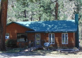 Foreclosed Home en SUDDERTH DR, Ruidoso, NM - 88345