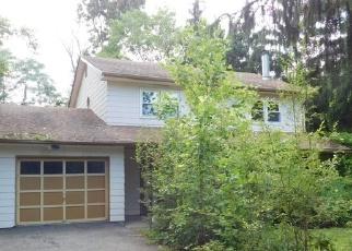 Foreclosed Home en BEAKES RD, New Windsor, NY - 12553