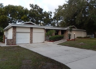 Foreclosed Home en BALMORAL DR, Clearwater, FL - 33756