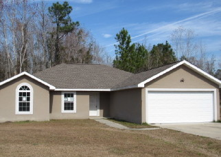 Foreclosed Home en TURKEY PT, Brunswick, GA - 31525