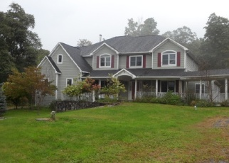 Foreclosed Home en HORTONTOWN RD, Hopewell Junction, NY - 12533
