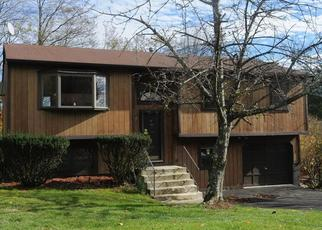 Foreclosed Home en HIGH ST, Monroe, NY - 10950