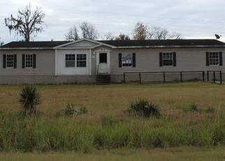 Casa en ejecución hipotecaria in Liberty Condado, GA ID: F4338679
