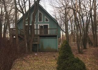 Foreclosed Home en LAUREL RD, Pocono Summit, PA - 18346
