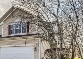Foreclosed Home en HEARTLAND GATE, Lake In The Hills, IL - 60156