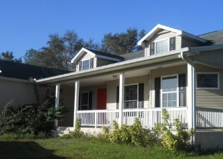 Foreclosed Home en S SWINGING TRL, Labelle, FL - 33935