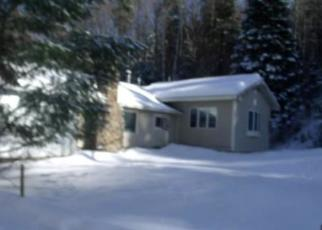 Foreclosed Home en N POINT RD, Long Lake, NY - 12847