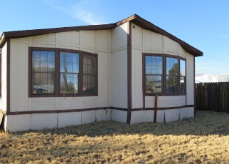 Foreclosure Home in Carson City, NV, 89701,  SPARTAN AVE ID: F4348589