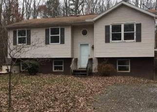 Casa en ejecución hipotecaria in Effort, PA, 18330,  SQUIRRELWOOD CT ID: F4354966