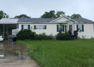 Foreclosure Home in Marion county, FL ID: F4355153