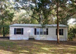 Casa en ejecución hipotecaria in Hawthorne, FL, 32640,  SE 155TH ST ID: F4358353