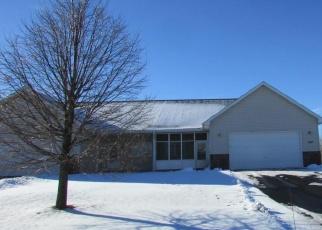 Casa en ejecución hipotecaria in Sherburne Condado, MN ID: F4360066