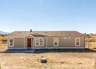 Foreclosure Home in Spring Creek, NV, 89815,  MERINO DR ID: F4367082