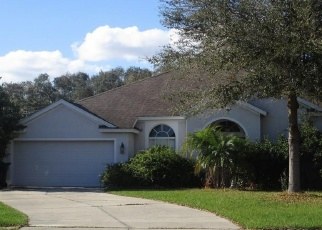 Foreclosed Home in ACORN LEAF CT, Valrico, FL - 33594