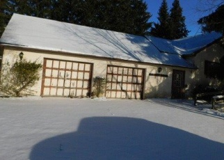 Foreclosure Home in Otsego county, NY ID: F4372647