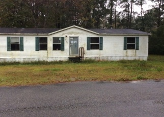 Foreclosure Home in Camden county, GA ID: F4373457