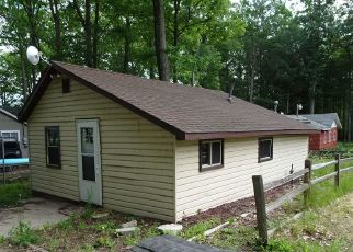 Foreclosed Home en N 18TH ST, Fountain, MI - 49410