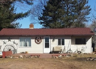 Foreclosed Home in DEGERSTROM RD, Askov, MN - 55704