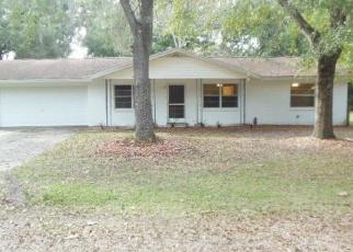 Casa en ejecución hipotecaria in Marion Condado, FL ID: F4376795