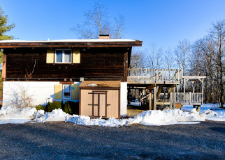 Foreclosed Home en CABBAGE PATCH RD, Haines Falls, NY - 12436